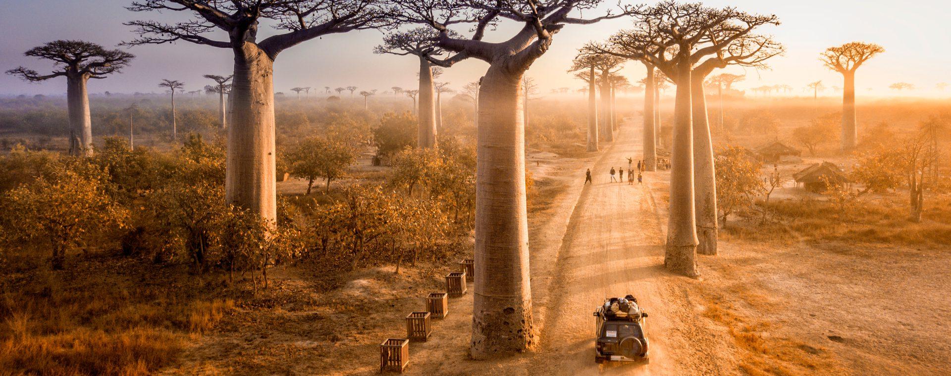 Magisch Madagaskar
