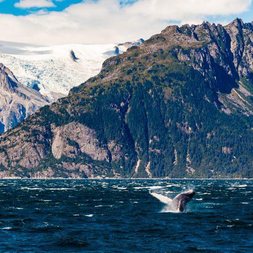 Ferry doorheen Prince William Sound